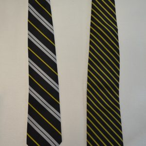 Berks Catholic Ties