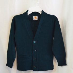 Plain Green V Neck Button Down Cardigan Sweater