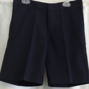 Closeout Dickies Navy Shorts