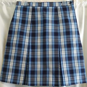 Blue and White Boxed Pleat Plaid Skirt